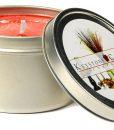 Coconut Mango Splash Candle Tins 8 oz