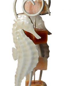 Candle on Rope Sea Horse Holder White