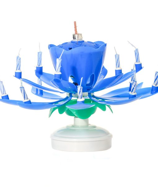 Musical Flower Birthday Candles Blue